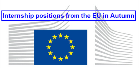 Internship positions from the EU in Autumn