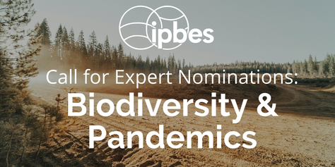 IPBES workshop on biodiversity and pandemics: Call for nominations