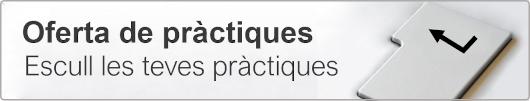 ofertapractiques.png